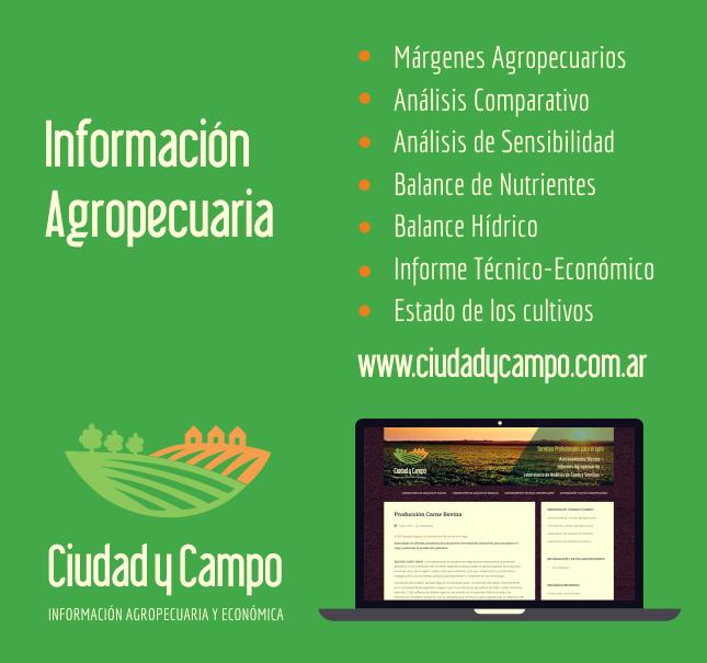 Identidad y Diseño web «Ciudad y Campo»