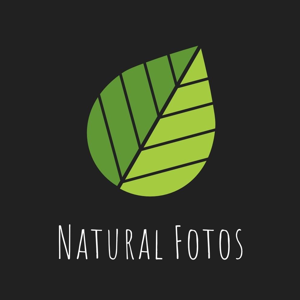 Creación de marca para «Natural Fotos»